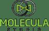 Molecula Studio